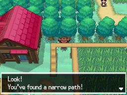 Pokemon Black 2 and White 2 :: Hidden Grottoes