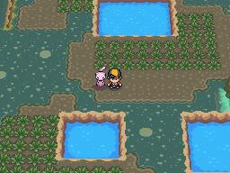 Pokemon Heartgold And Soulsilver The Johto Safari Zone