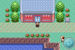 Pokemon contest guide! 600 followers! [part 1: preparation.