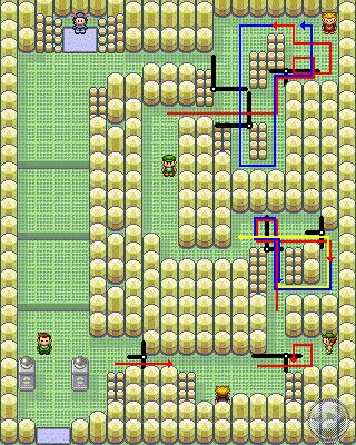 pokemon emerald solution
