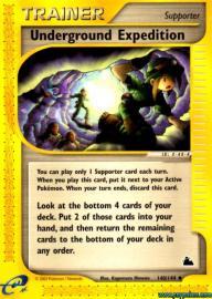 Team Magma's Poochyena (EX Team Magma versus Team Aqua: 66/95)